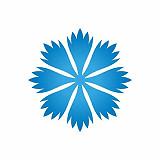Virolainen konservatiivipuolue EKRE pyrkii kampeamaan hlbti-kysymyksissä Viroa Venäjän tielle