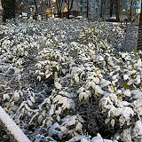 Talvelta näyttää