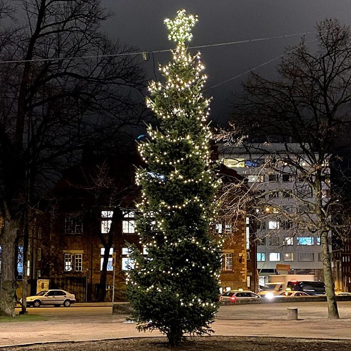 Karhupuisto, Helsinki