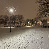 Talvi tuli
